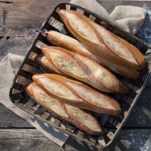 Specialty Semolina Breads